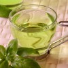 Зеленый чай поможет при фиброзе печени?
