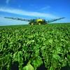 В Донецкой области на смену нерентабельным шахтам могло бы прийти высокорентабельное сельское хозяйство