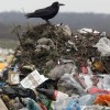 Участники Конвенции об оценке воздействия на окружающую среду строго предупредили Украину